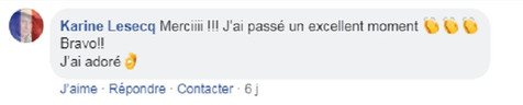 commentaire15.jpg