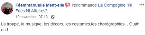 commentaire12.jpg