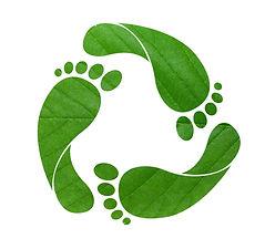 AABG_green-footprint-shutterstock11.jpg