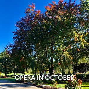 Opera in October Tile.png