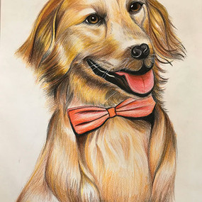 "Katie Yuan, ""Golden Retriever"""