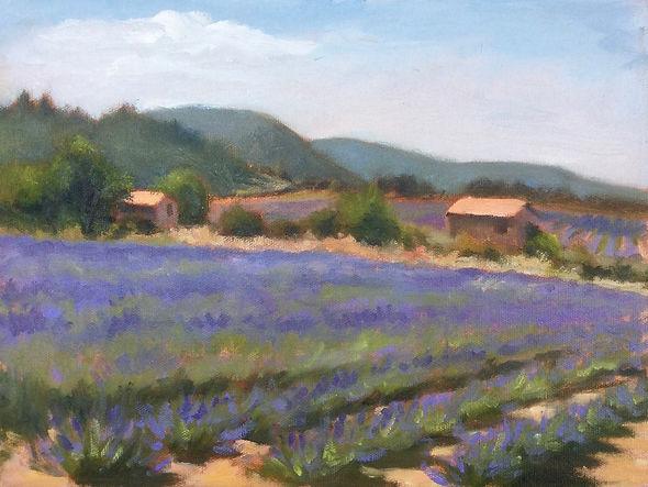 Barbara Mandel Provence Lavender Field .