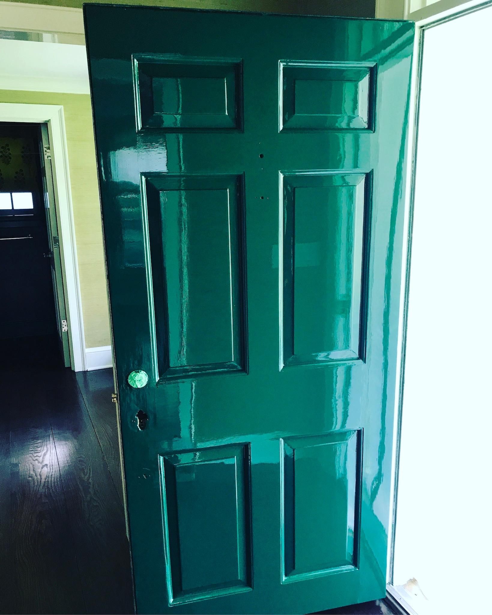 High Gloss door