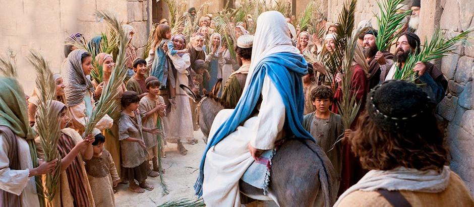 Palm Sunday   -                                              Beautiful Start to Holy Week
