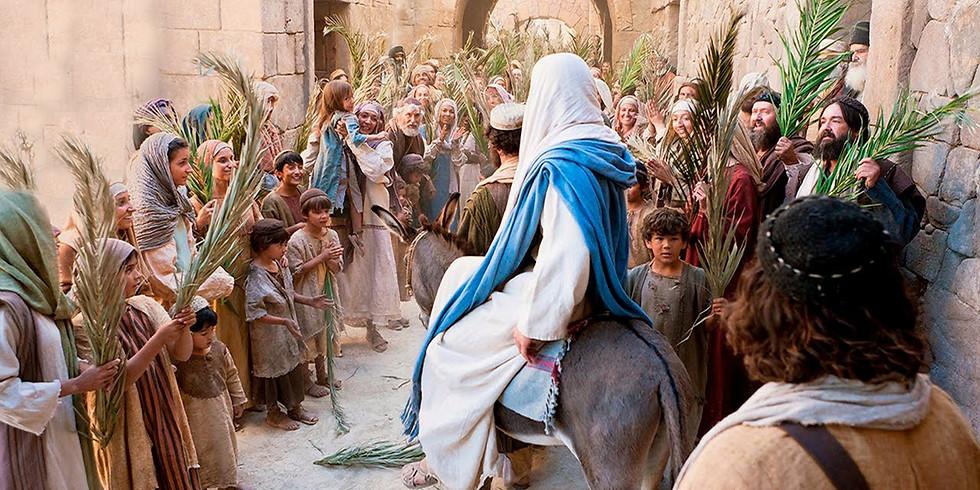 11 am  Palm Sunday - Holy Communion with Father Scott