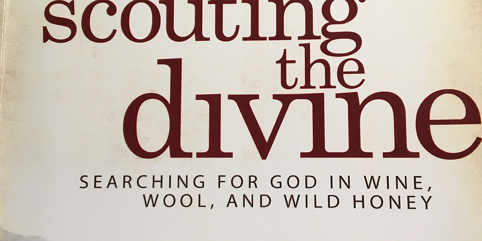 Women's Bible Study - Scouting the Divine