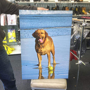 T shirt printing Bristol :We print high quality canvasses in Bristol