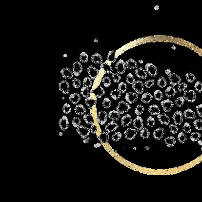 dots hoop.png