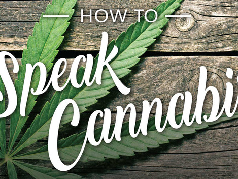 How to Speak Cannabis