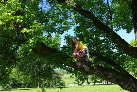 """Climbing Trees"""