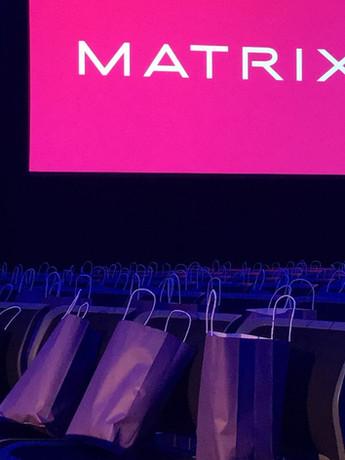 Matrix Hair Biz