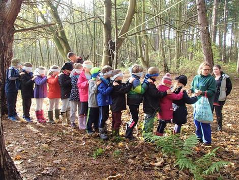 Gozdna šola z Jo Sayers