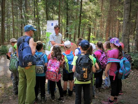 Gozd eksperimentov: znanost z roko v roki z vzgojo in izobraževanjem