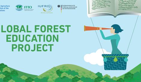 Izobraževanje o gozdovih v poklicnih, strokovnih in tehniških šolah – ga lahko izboljšamo?
