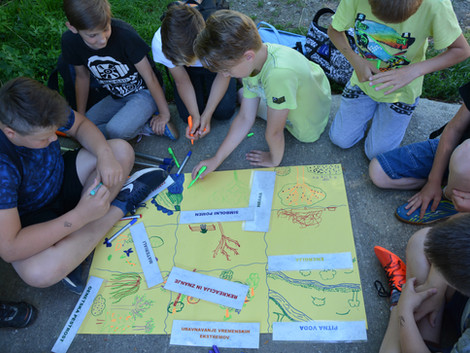 The Forest of Experiments – promoting forestry science to youth