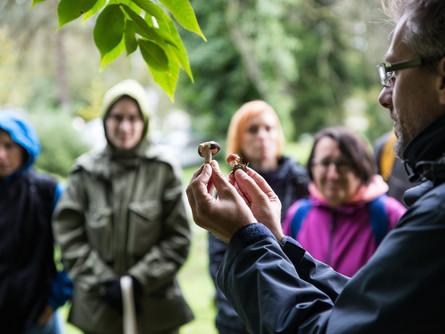 Gozdna pedagogika in izobraževanje pedagogov