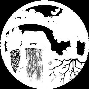 ReGenerate%20Illinois_Logo_inverted_edit