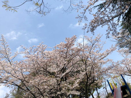 4/1(木)~4/10(土)の営業情報