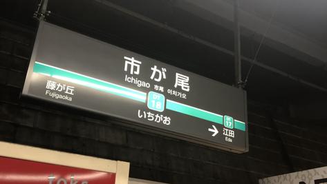 本日の営業情報(9月29日)