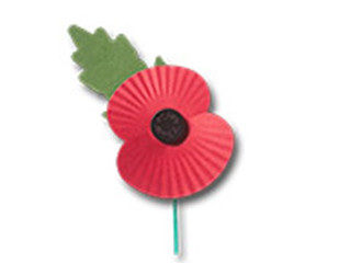 In Flander's Field - Remembering who and why?
