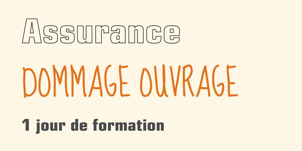 Assurance dommage ouvrage (CCRD-CNR-TRC), Maîtriser les particularités des polices souscrites par le maître d'ouvrage