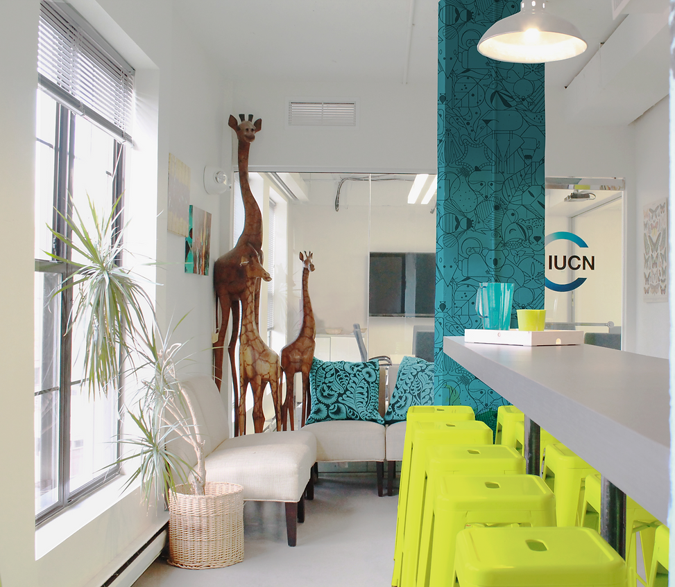 The International Union for Conservation of Nature was designed with a nod to environmental friendly material and designs. The office was designed by Bill London Design Group.
