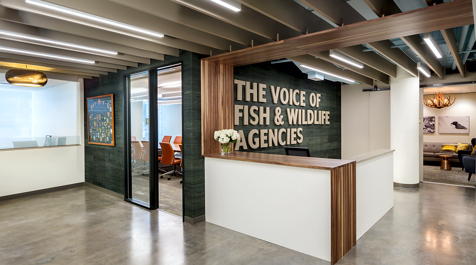The AFWA lobby incorporates concrete floors, butcher block accents and a cardboard light. The space was designed by Bill London Design Group.