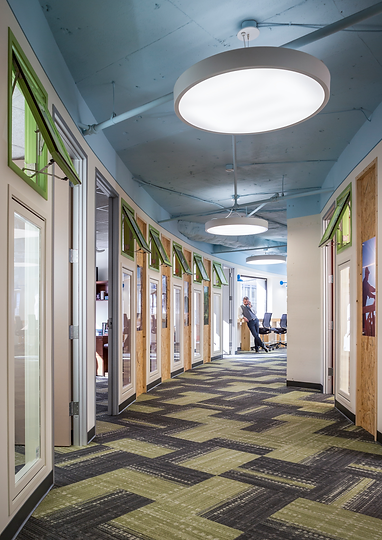 The hallway in the Sustainable Forestry Initiative's office curves around the interior rooms and features particle board and bright green accents.