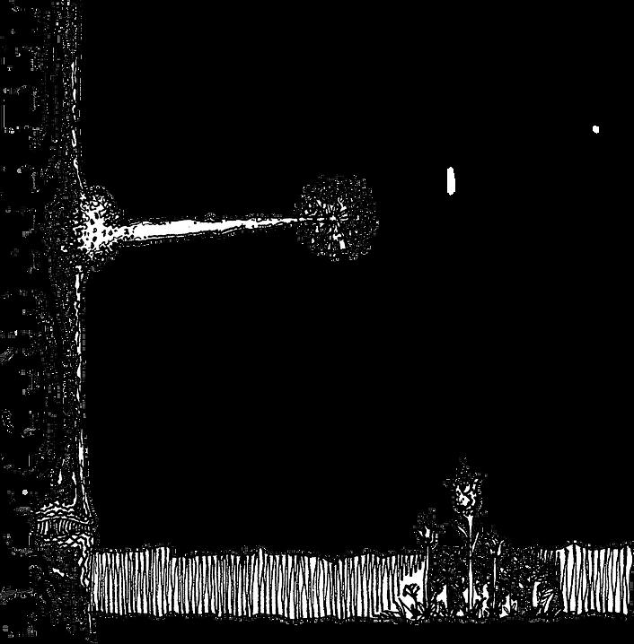 Sketch of a tree in pen on paper by Bill London.