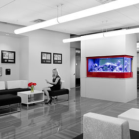 The lobby at the Micropact office is sleek and beautiful with a custom fish tank, glossy tile and clean lines. Designed by bldg in Washington DC.