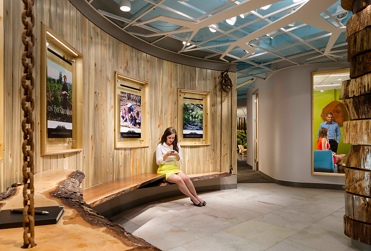 AFF's lobby incorporates bug-kill wood sustainably harvested from AFF members.