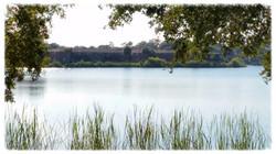 Lake Bentley Views