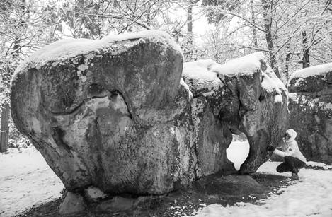 2018-02-07-barbizon-elephant-neige-(40)-