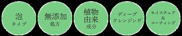 5つの特徴_03.png