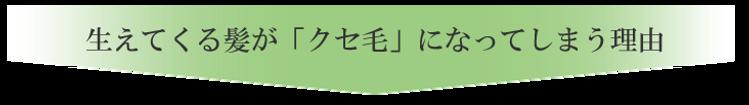 クセ毛になる理由_03.png
