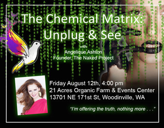The Chemical Matrix: 2nd Chance