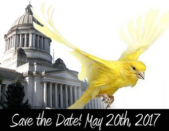 Canaries Unite! Rally at the Capitol
