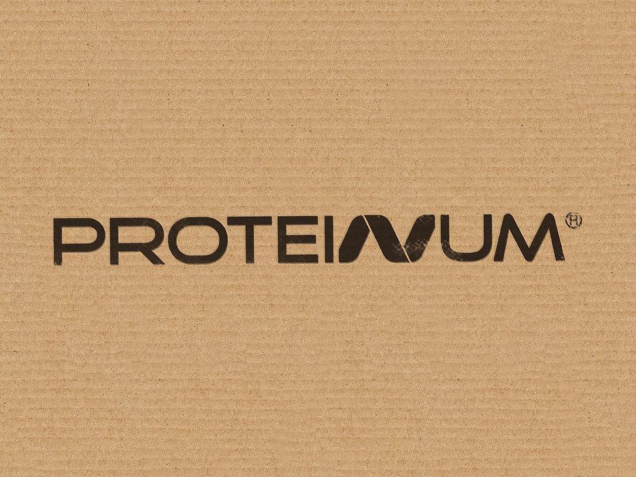 PRESENT PROTENIUM-09.jpg