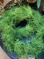 """23"""" Faux Fern Wreath"""