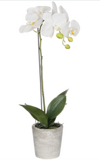 "24"" Phalaenopsis Faux Orchid Pot"