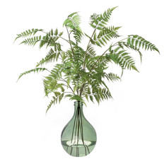 "Tall Fern in Green Glass Vase h.42"""