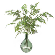 Tall Fern in Green Glass Vase h.42""