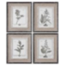 Gray Plant Prints