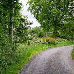Willsgrove Estate & Country Roads