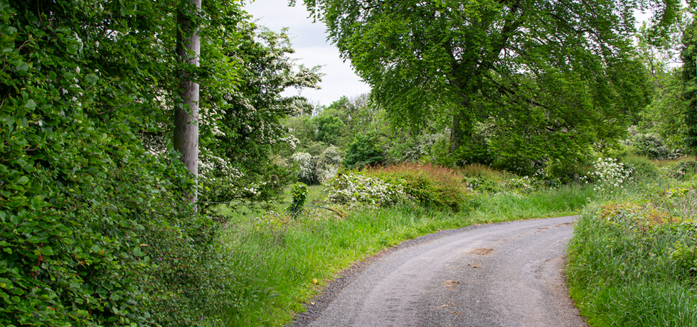 See Willsgrove Estate & Country Roads