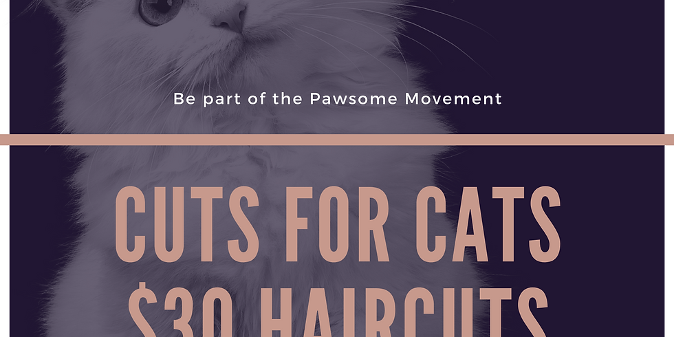 Cuts for cats