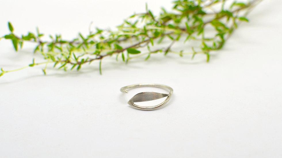 Tiny drop - Silver Ring