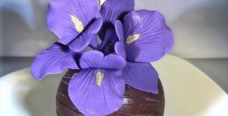 Mothers Love / Choc Iris