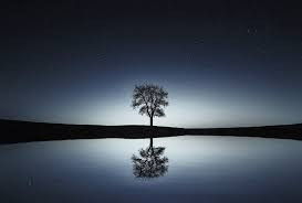 A Time for Reflection -