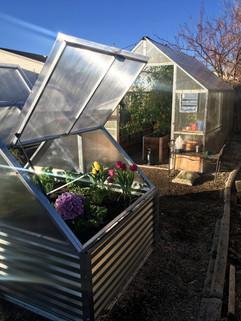 RB_w greenhouse.jpg